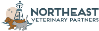 Companion Animal Hospital Logo
